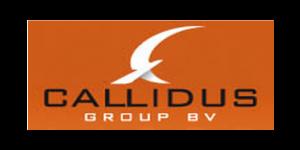 Callidus referentie gebruiker RFEM rekensoftware