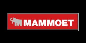 Mammoet engineering referentie gebruiker RFEM rekensoftware